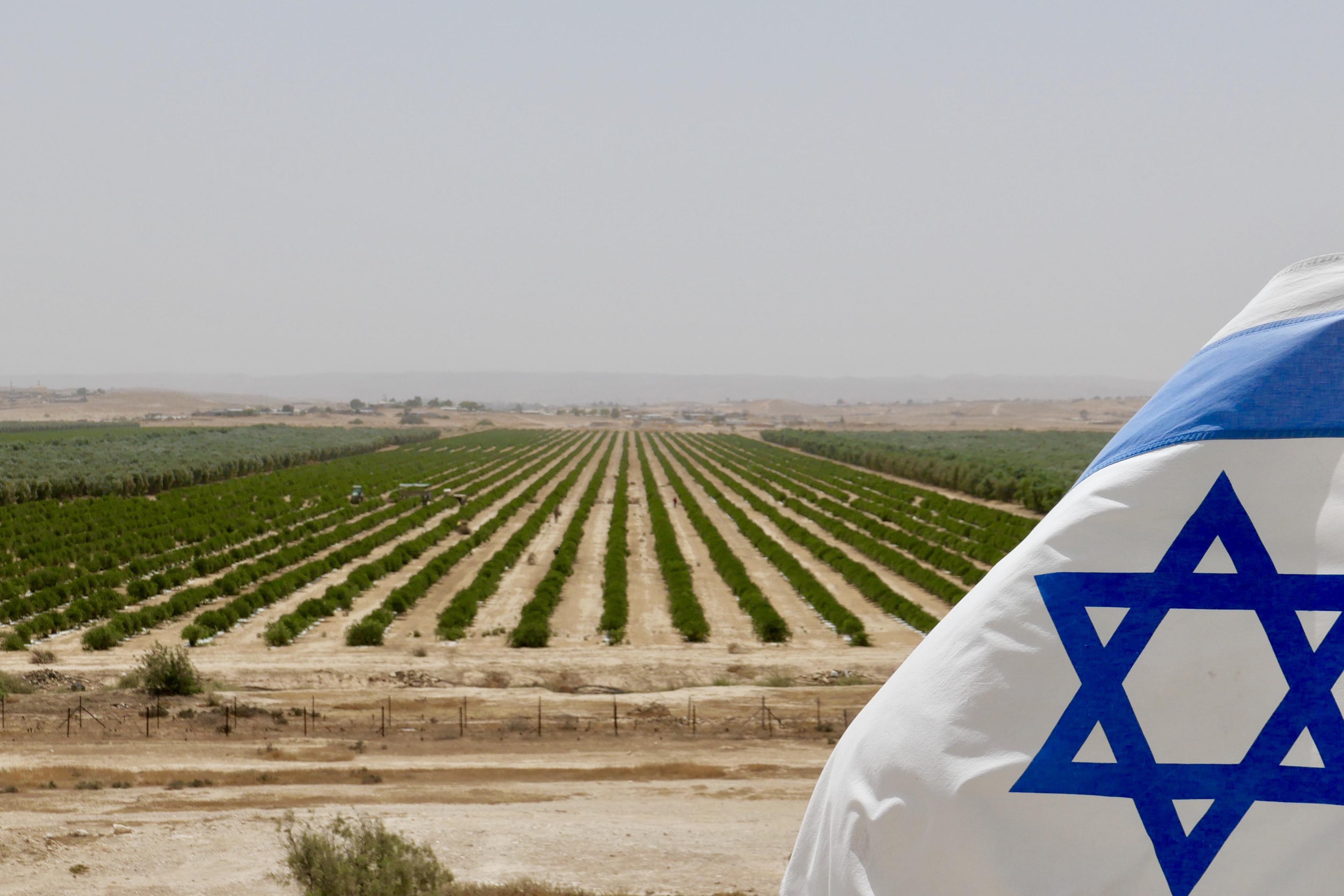 Die Wüste in Israel blüht